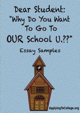 Sample entrance essay university